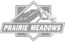 prairie meadows grey