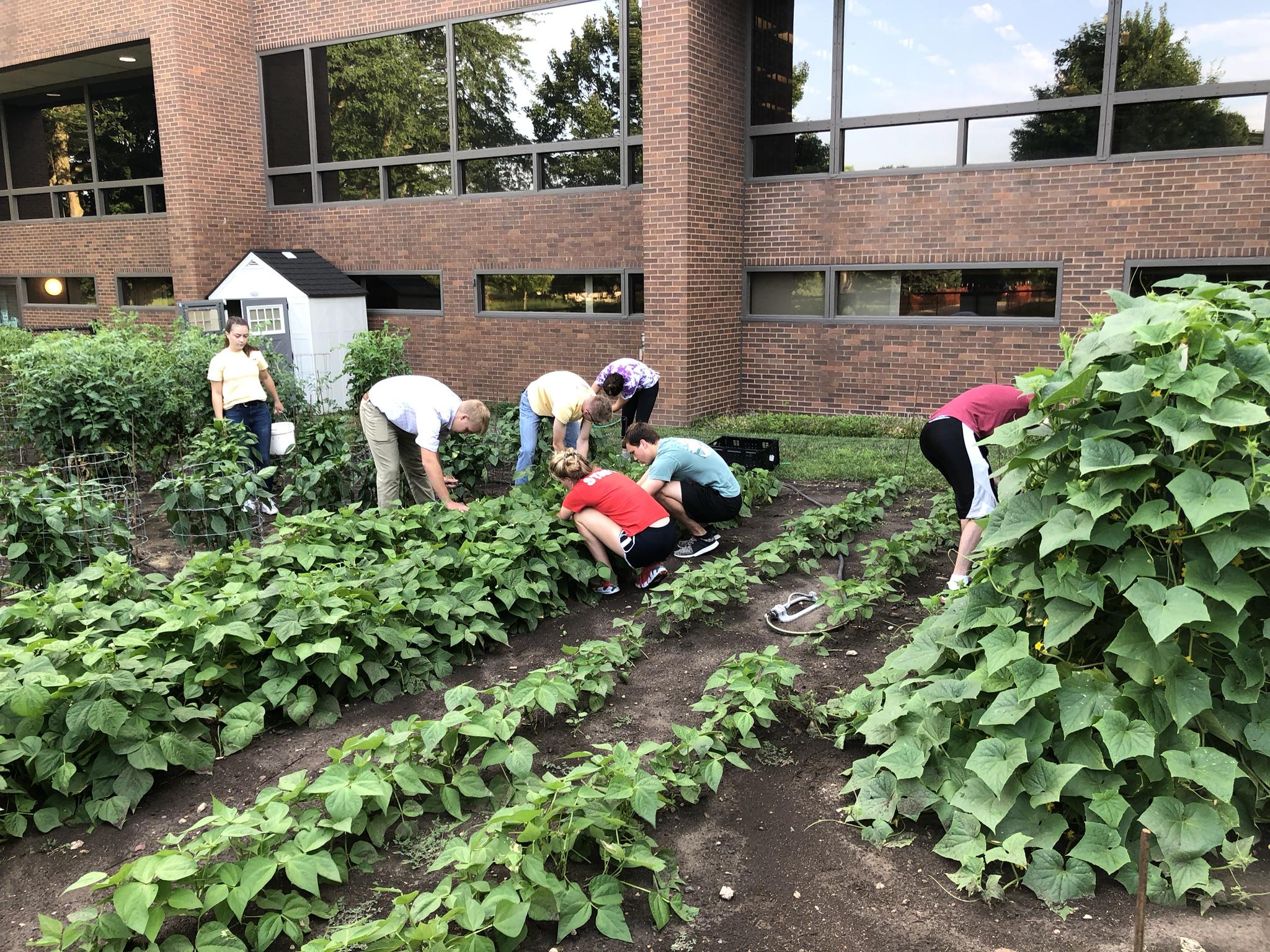 Volunteer Spotlight- Farm Bureau Financial Services